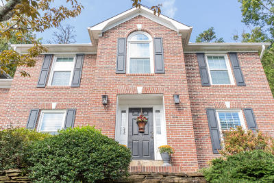 Knoxville Single Family Home For Sale: 1859 Pinestraw Lane