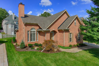 Knoxville Single Family Home For Sale: 9841 Saint Germaine Drive