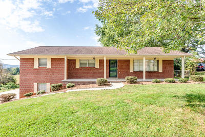 Knoxville Single Family Home For Sale: 7505 Jessilee Drive