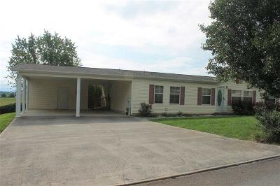 Dandridge, Sevierville Single Family Home For Sale: 116 Danielle Drive