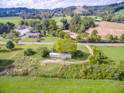 Corryton Single Family Home For Sale: 1205 Tazewell Pike