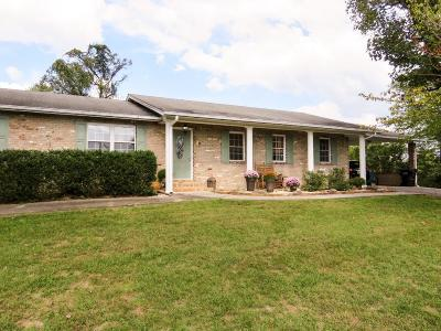 Knoxville Single Family Home For Sale: 3704 Mountain Vista Rd