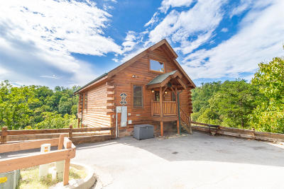 Sevierville Single Family Home For Sale: 3069 Legacy Vista Drive