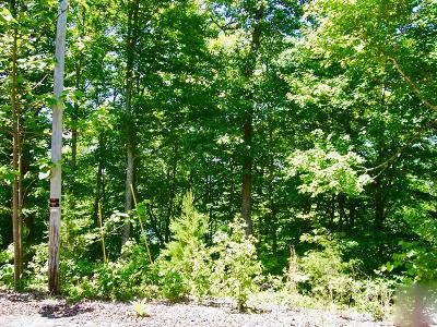 Anderson County, Campbell County, Claiborne County, Grainger County, Union County Residential Lots & Land For Sale: Lot 831 Jacks Bluff Rd
