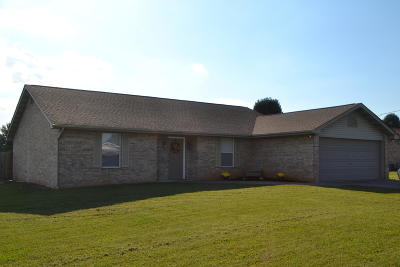 Sevierville Single Family Home For Sale: 1407 Little Kaycee Drive