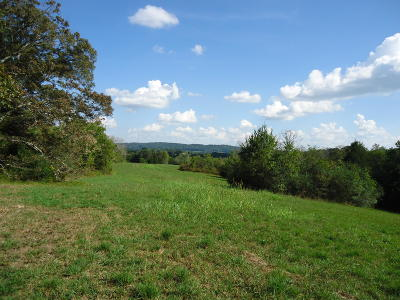 Loudon County Residential Lots & Land For Sale: 375 Ten Mile Rd