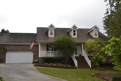 Sevierville Single Family Home For Sale: 2528 Lees Path