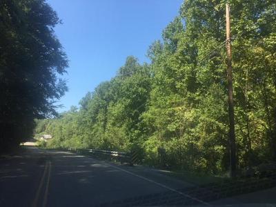 Gatlinburg Residential Lots & Land For Sale: Parkway East