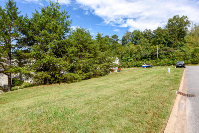 Knoxville Residential Lots & Land For Sale: 521 Stolman Way