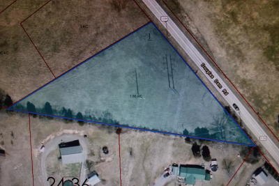 Sevierville Residential Lots & Land For Sale: Lot 1 Douglas Dam Rd/River M