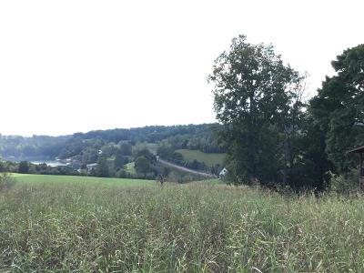 Residential Lots & Land For Sale: Lot 16 Deer Hill Lane