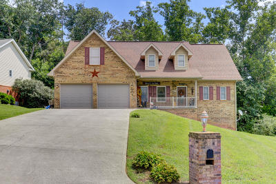 Anderson County Single Family Home For Sale: 106 Settlers Drive