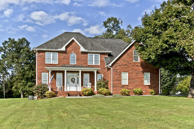 Grainger County Single Family Home For Sale: 390 Chadwick Way