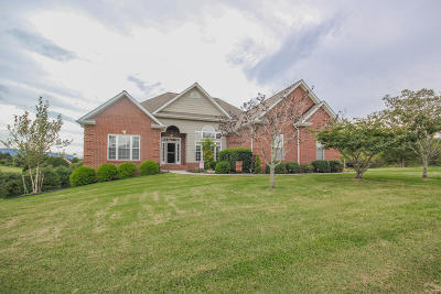 Maryville Single Family Home For Sale: 1507 Mint Meadows Drive