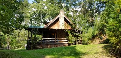 Tellico Plains Single Family Home For Sale: 2815 River Rd
