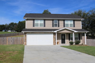 Sevierville Single Family Home For Sale: 1059 Stones Throw Lane