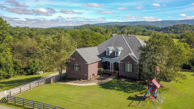 Blount County Single Family Home For Sale: 1913 Raulston Rd