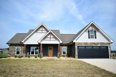 Sevierville Single Family Home For Sale: Lot 44 Vista Meadows Lane