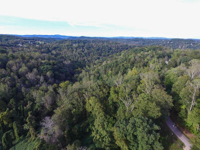 Anderson County, Campbell County, Claiborne County, Grainger County, Union County Residential Lots & Land For Sale: Mountain Lake Drive