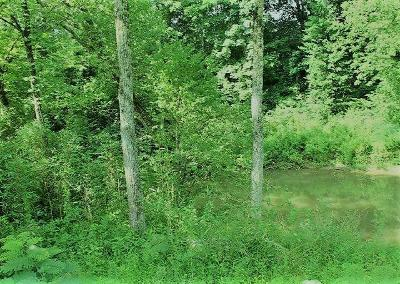 Residential Lots & Land For Sale: Tr225+/-Ac Thorngrove Pike
