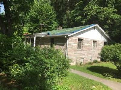Pigeon Forge Single Family Home For Sale: 940 Gnatty Branch Road Rd