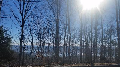 Mooresburg Residential Lots & Land For Sale: Lot 216 Harbor View
