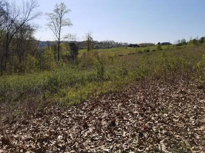 Anderson County, Campbell County, Claiborne County, Grainger County, Union County Residential Lots & Land For Sale: Lot 28 Melissa Lane