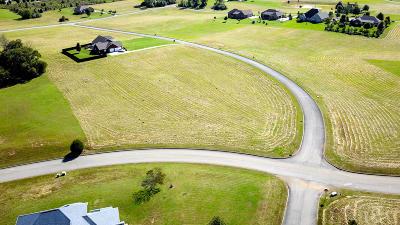 Friendsville, Greenback, Louisville, Maryville, Sevierville, Tallassee, Townsend, Townsend/walland, Vonore, Walland Residential Lots & Land For Sale: #55 Bainbridge Drive