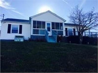 Sevierville Single Family Home For Sale: 1153 Old Newport Hwy
