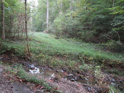Anderson County, Campbell County, Claiborne County, Grainger County, Union County Residential Lots & Land For Sale: Spring Hollow