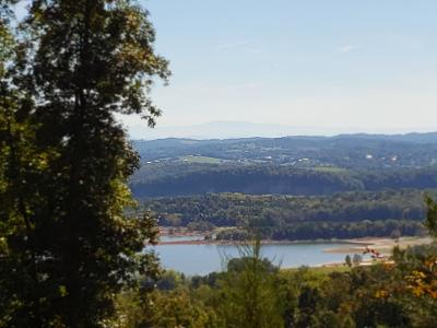 Mooresburg Residential Lots & Land For Sale: Lot 217 Pinnacle Point