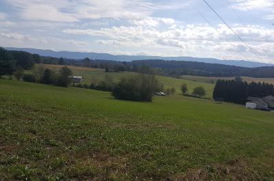 Friendsville, Greenback, Louisville, Maryville, Sevierville, Tallassee, Townsend, Townsend/walland, Vonore, Walland Residential Lots & Land For Sale: Lot 27 Aud Orr Drive