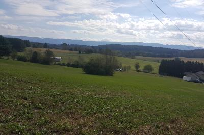 Friendsville, Greenback, Louisville, Maryville, Sevierville, Tallassee, Townsend, Townsend/walland, Vonore, Walland Residential Lots & Land For Sale: Lot 28 Aud Orr Drive