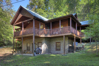 Sevier County Single Family Home For Sale: 1130 Ogle Hills Rd