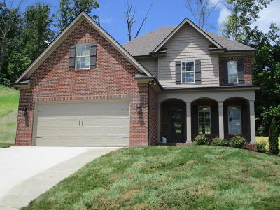Knoxville Single Family Home For Sale: 1670 Sugarfield Lane