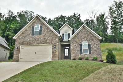 Knoxville Single Family Home For Sale: 1674 Sugarfield Lane