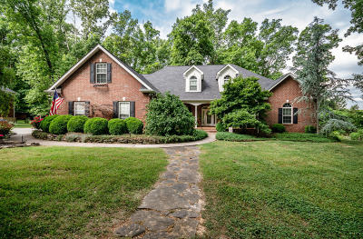 Knoxville Single Family Home For Sale: 313 Wooded Lane