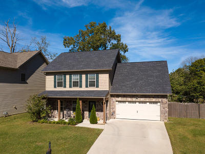 Knoxville Single Family Home For Sale: 1208 Dark Creek Lane