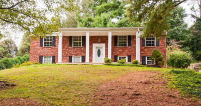 Knoxville Single Family Home For Sale: 8924 Farne Island Blvd