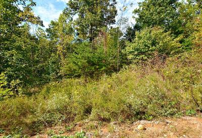 Sevier County Residential Lots & Land For Sale: Lot 125 Brook View Tr