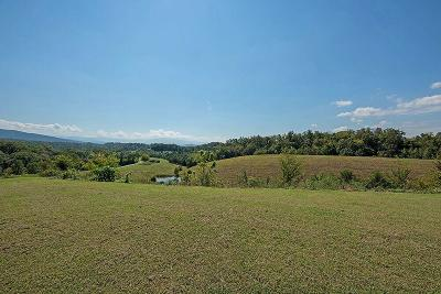 Sevier County Residential Lots & Land For Sale: 3050 Sims Lot 2 Rd