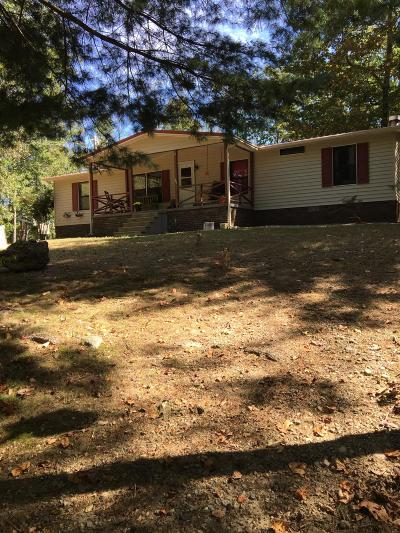 Single Family Home For Sale: 161 Clay Standifer Lane
