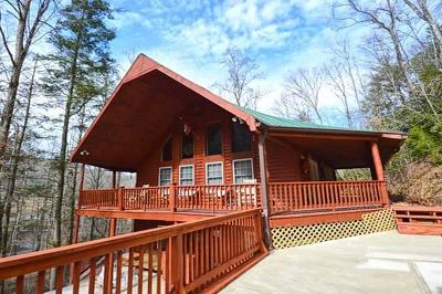Sevier County Single Family Home For Sale: 4040 Hickory Hollow Way