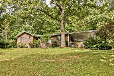 Loudon County Single Family Home For Sale: 3253 Vonore Rd