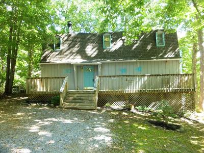 Gatlinburg Single Family Home For Sale: 904 Echo Place