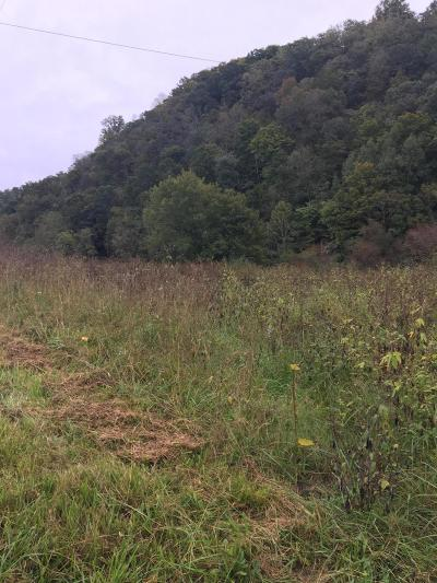 Tazewell Residential Lots & Land For Sale: Upper Caney Valley Rd
