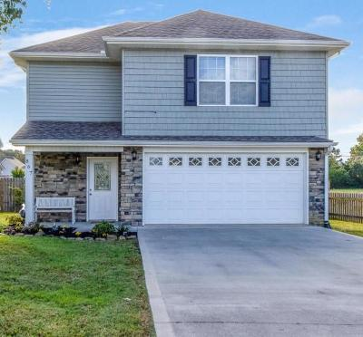 Maryville Single Family Home For Sale: 867 Wells Rd