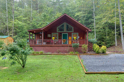 Sevier County Single Family Home For Sale: 3008 Grassy Branch Loop