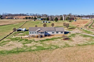 Greenback Single Family Home For Sale: 36175 Hwy 95 N