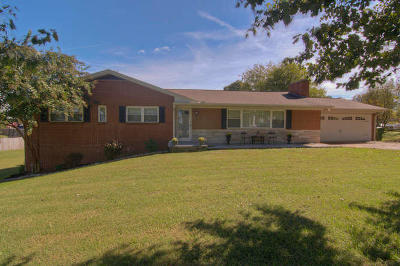 Maryville Single Family Home For Sale: 1730 Old Niles Ferry Rd